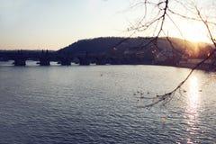 Заход солнца в Праге Стоковое Изображение RF