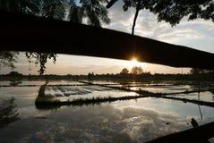 Заход солнца в празднике стоковая фотография rf