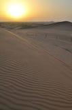 Заход солнца в пустыне Стоковая Фотография