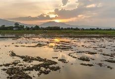 Заход солнца в северном Таиланде Стоковые Изображения RF