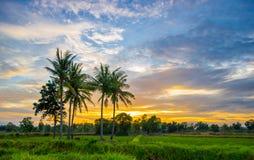 Заход солнца в сельской местности Стоковые Изображения