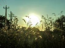 Заход солнца в сельской местности стоковое фото