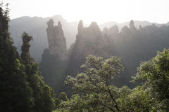 Заход солнца в соотечественнике Forest Park Zhangjiajie Стоковые Изображения