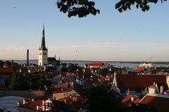 Заход солнца в Таллине Стоковые Изображения