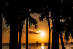 Заход солнца в тропической стране валы силуэта ладони Таиланд Стоковые Фото
