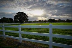 Заход солнца в Флориде с частоколом Стоковые Изображения RF