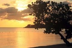 Заход солнца в ямайке, карибском море Стоковые Изображения