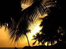Заход солнца в Bayahibe Стоковые Изображения RF