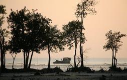 Заход солнца в Sundarbans Стоковые Фотографии RF