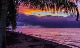 Заход солнца Гаваи стоковое изображение rf