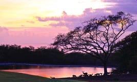 Заход солнца Гаваи стоковая фотография