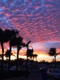 Заход солнца Голливуд стоковая фотография