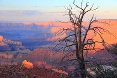 Заход солнца гранд-каньона Стоковое Изображение