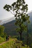 Заход солнца деревни горной тропы непальской семьи пеший Конец северная Азия путешественника следа молодых людей группы взбираясь Стоковое Фото