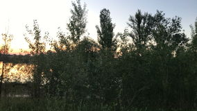 Заход солнца лета на тихом озере акции видеоматериалы