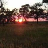Заход солнца летнего времени Стоковые Изображения