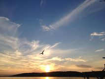 Заход солнца женевского озера Стоковое Изображение