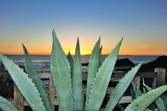 Заход солнца западного побережья Стоковые Фото