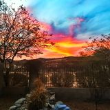 Заход солнца задворк Стоковое Фото