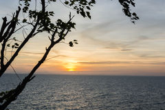 Заход солнца за деревом тени Стоковая Фотография