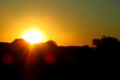Заход солнца за деревьями Стоковое Изображение