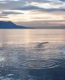 Заход солнца за озером Женев Стоковое фото RF