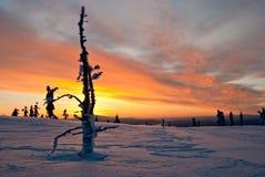 Заход солнца зимы в Финляндии Стоковая Фотография RF
