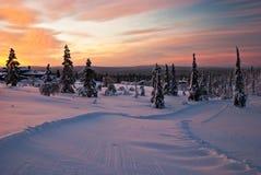 Заход солнца зимы в Финляндии Стоковые Фото