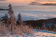 Заход солнца зимы - заворот Стоковая Фотография