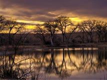 Заход солнца зимы на пруде для рыбалки Стоковое Изображение RF
