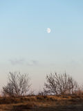 Заход солнца зимы с луной и самолетом отстает в небе Стоковые Фотографии RF
