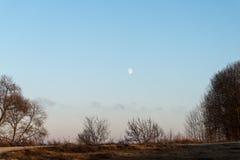 Заход солнца зимы с луной и самолетом отстает в небе Стоковые Изображения RF