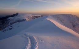 Заход солнца зимы стоковое изображение