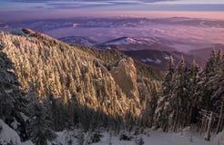 Заход солнца зимы стоковая фотография