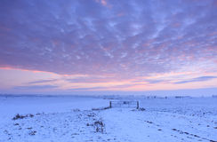 Заход солнца зимы Стоковые Фото