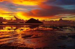 Заход солнца золотой Стоковые Изображения RF