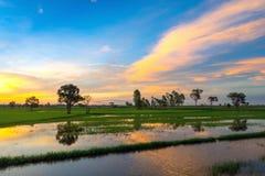 Заход солнца и небо облака Стоковое Изображение RF