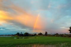 Заход солнца и небо облака Стоковое фото RF