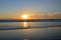 Заход солнца и океан Стоковые Изображения RF