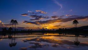 Заход солнца и отражение промежутка времени красивые в пруде сток-видео