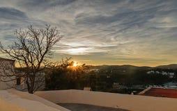 заход солнца и одиночное дерево Стоковая Фотография RF