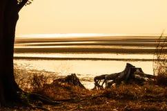 Заход солнца и песок Стоковые Фото