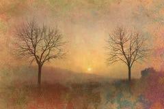 Заход солнца и предпосылка grunge деревьев стоковые фото