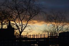 Заход солнца и силуэт деревьев Стоковое Фото