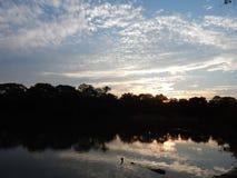 Заход солнца между деревьями Стоковая Фотография