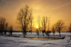 Заход солнца меда Стоковые Фото