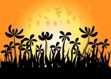 заход солнца модели травы 3d Стоковое фото RF