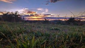 заход солнца модели травы 3d Стоковая Фотография RF