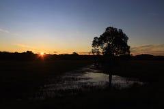 Заход солнца над влажной землей Стоковые Фото