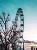 Заход солнца на глазе Лондона, Англия стоковые фото